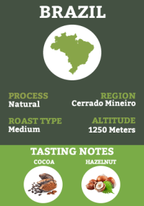 Brazil - Natural
