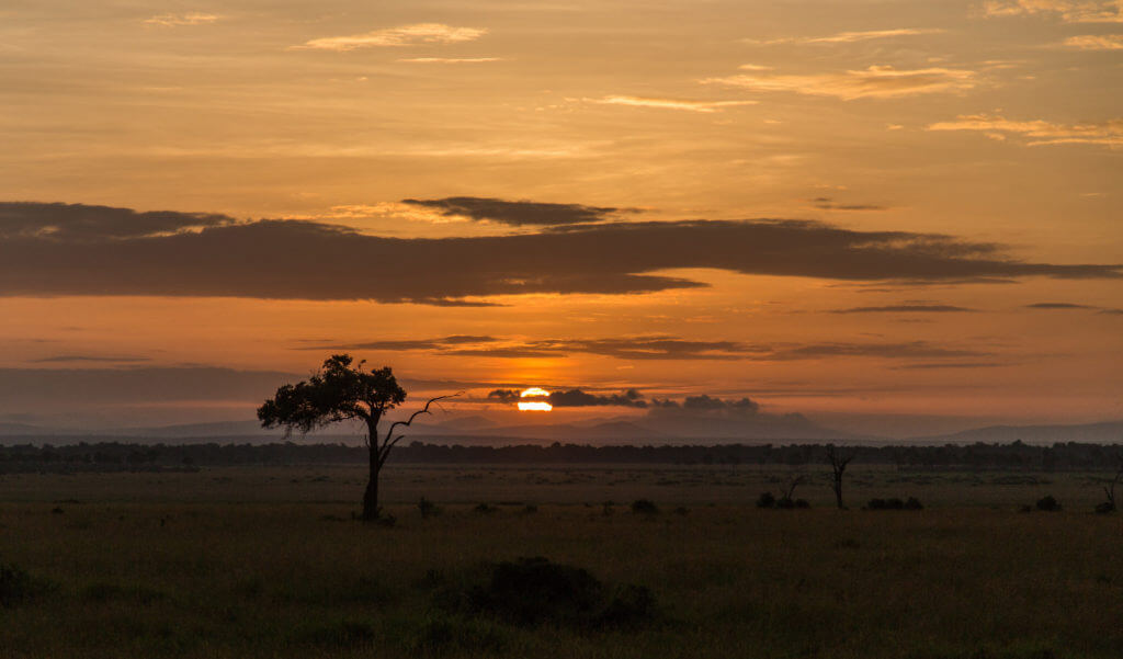 Sunrise Angama Mara Photo By: Sunrise Angama Mara
