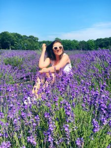 Lavender By the Bay Long Island 3 Taylor Davies