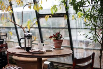 Ways to Use a French Press