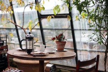 Breakfast table by the window